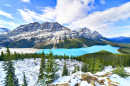Peyto Lake, Banff-Nationalpark, Kanada